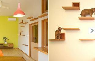Na casa projetada pelo arquiteto japonês Akira Koyama, foram feitos buracos que levam para outros cômodos e instaladas prateleiras