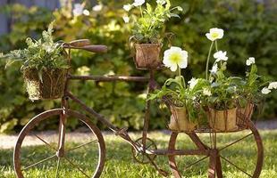 Para decorar o jardim, as bicicletas podem servir de suporte para flores