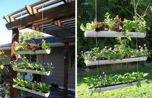 Além de belos jardins, também é possível fazer hortas verticais. %u201CUma outra idéia é cultivar plantas, que são úteis não só para decorar, mas também para alimentação, como salsa, manjericão, hortelã, entre outros