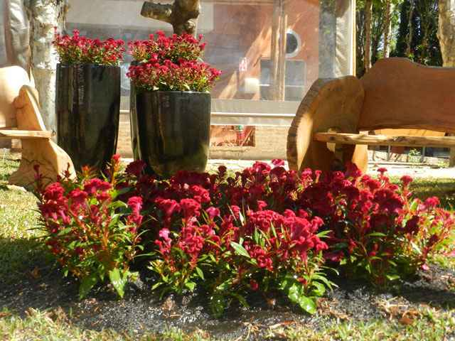 Evento em holambra sp re ne tend ncias mundiais em for Paisagismo e jardinagem