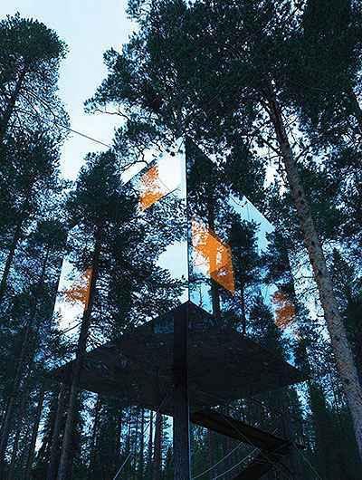 Hotel na árvore na Suécia - Verd Gris/Divulgação