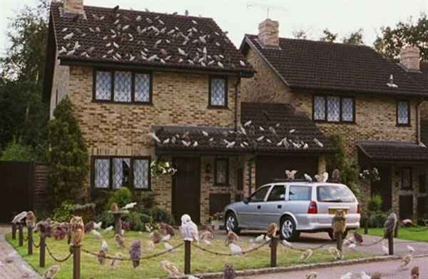 A casa foi usada como fachada para a residência dos Dursleys, tios de Harry Potter  - Reprodução/internet