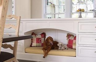 O armário serve de cama para os animais de estimação da casa