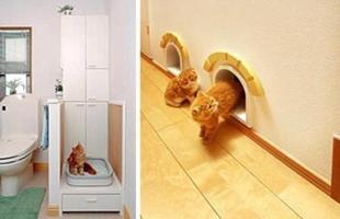 O banheiro também pode ser adaptado para os pets