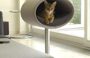 Com formato futurista, a casinha desse gatinho é suspensa e acolchoada