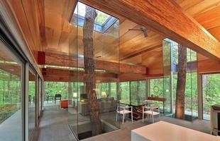 As árvores podem fazer parte da decoração, deixando o ambiente inusitado e totalmente ligado à natureza