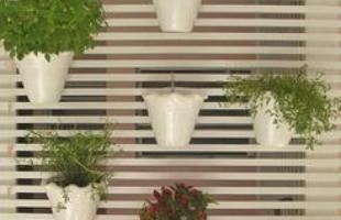Há uma infinidade de flores e plantas que podem ser cultivadas dentro de casa. O jardim vertical, além de decorar o ambiente, economiza espaço