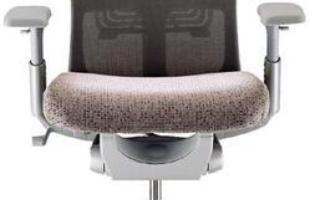 A Haworth do Brasil (http://www.haworthmarketing.com/brazilmade/) oferece a cadeira Zody, produto desenvolvido em conjunto por europeus e norte-americanos. Seu grande diferencial é o sistema de suporte lombar assimétrico, que garante maiores níveis de conforto, associado a suporte pélvico passivo e ampla gama de recursos ergonômicos. A cadeira é sustentável e adequada a qualquer ambiente corporativo, como estações de trabalho e salas de reuniões