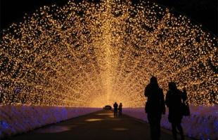 Jardim iluminado de cidade japonesa surpreende com milhões de luzes coloridas