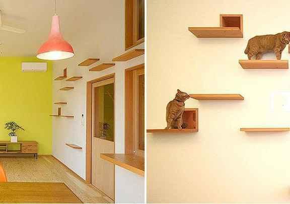 Na casa projetada pelo arquiteto japonês Akira Koyama, foram feitos buracos que levam para outros cômodos e instaladas prateleiras - Reprodução/www.keyoperation.com
