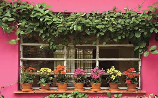 Flores trazem estilo campestre para a decoração - Reprodução/Internet