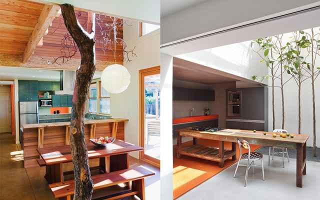 As árvores dentro de casa trazem o espírito de proximidade com a natureza - Reprodução/Internet