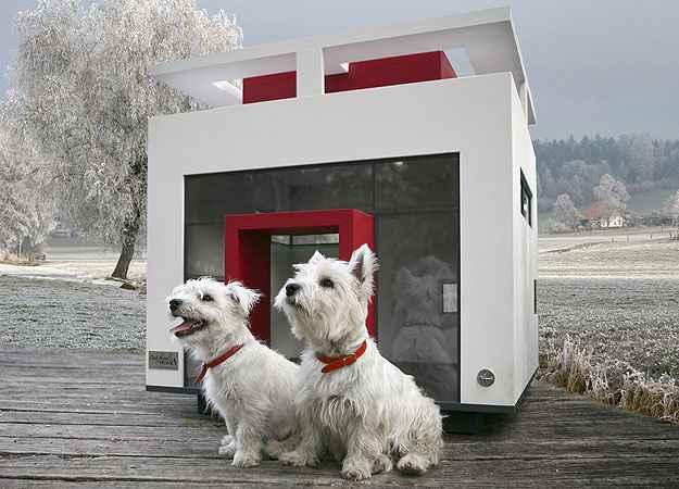 O modelo Cubix segue as premissas da Bauhaus - Best Friend's Home/Divulgação