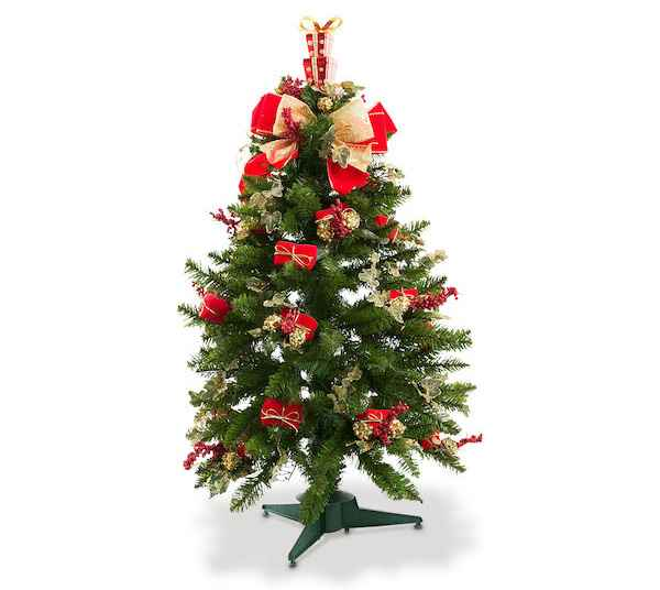 Mini árvore: 60 cm de altura - Divulgação/Cecilia Dale