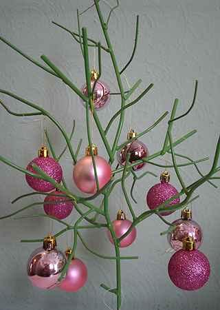 Árvore de Natal foge do tradicional e surge de forma estilizada - Carlos Altman/EM/D.A Press