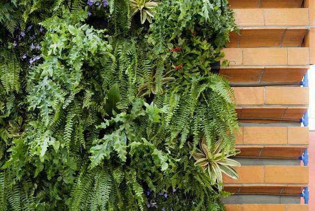 Cerâmica exclusiva para a instalação de jardins verticais e paisagismo vertical possui em diversos tamanhos e alturas em formas diferenciadas - GreenWall/Divulgação