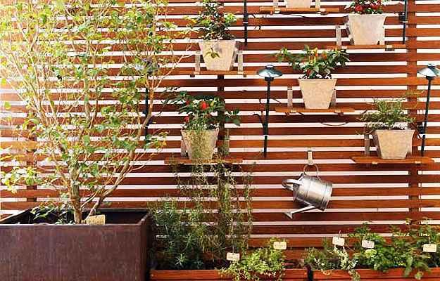 Para escolher onde a horta será montada, é preciso avaliar o espaço e a luminosidade disponíveis - Reprodução/Internet/cantinhodabbel.com.br