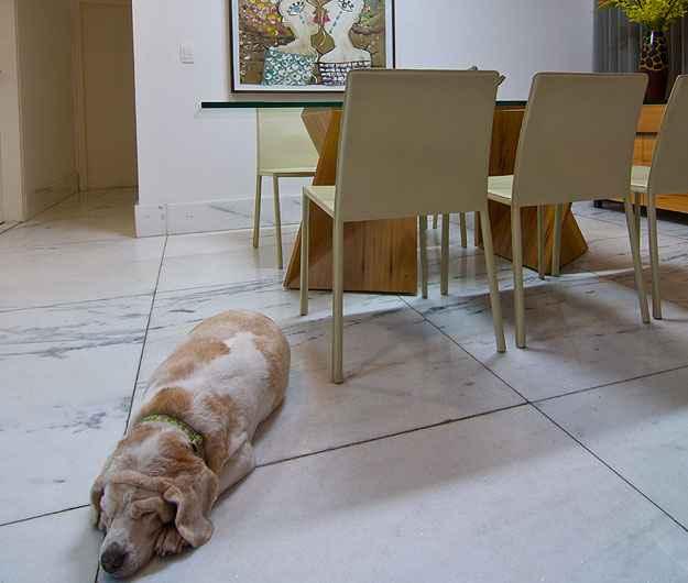 Projeto das arquitetas Nathália Otoni e Luciana Araújo privilegia piso em pedra e claro, por ser mais fácil de limpar e visualizar a sujeira dos bichinhos - RODRIGO MARCANDIER/DIVULGAÇÃO