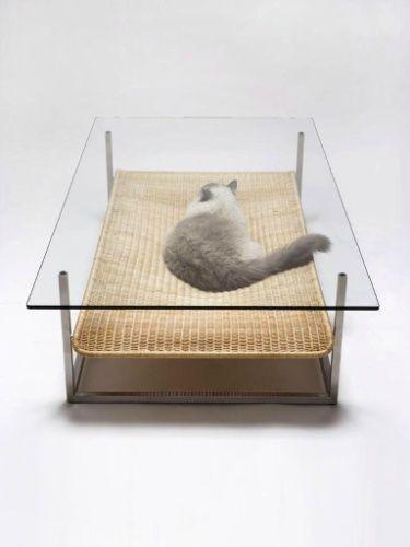 A mesinha de centro também pode ser usada como uma cama para gatos - Divulgação